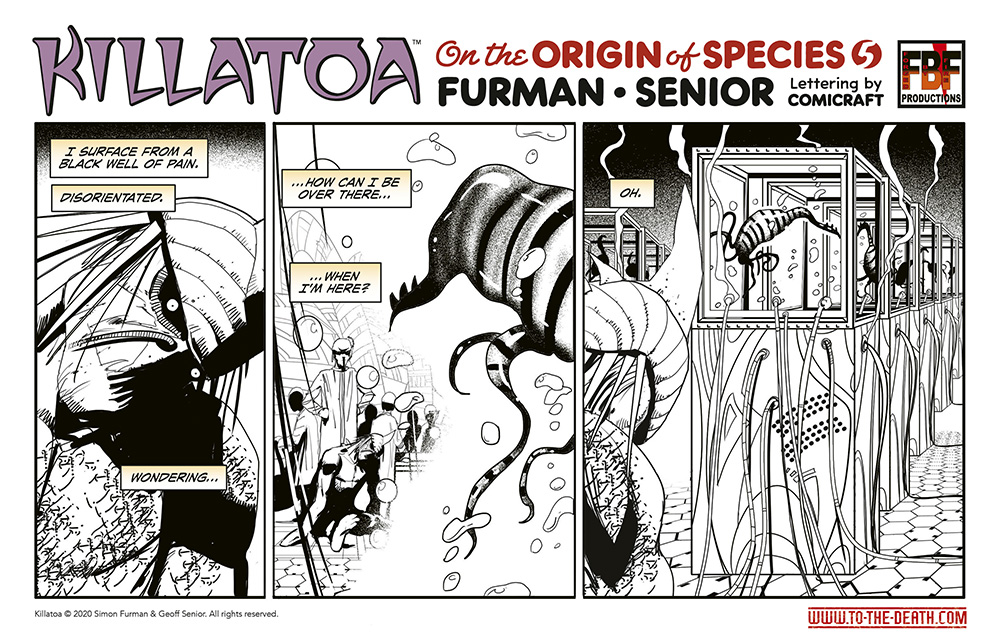 Killatoa daily strip 5